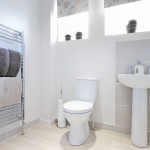 How do I choose the right toilet for my bathroom remodel?